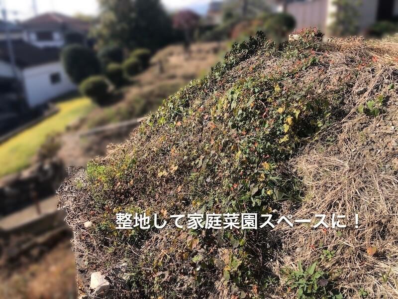 棚田式家庭菜園1